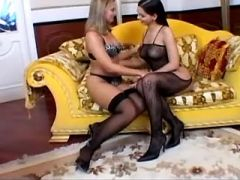 Two gorgeous lesbians in stockings lick each other