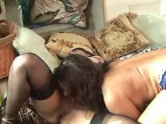 Lesbo beauty licks and dildofucks horny girlfriend